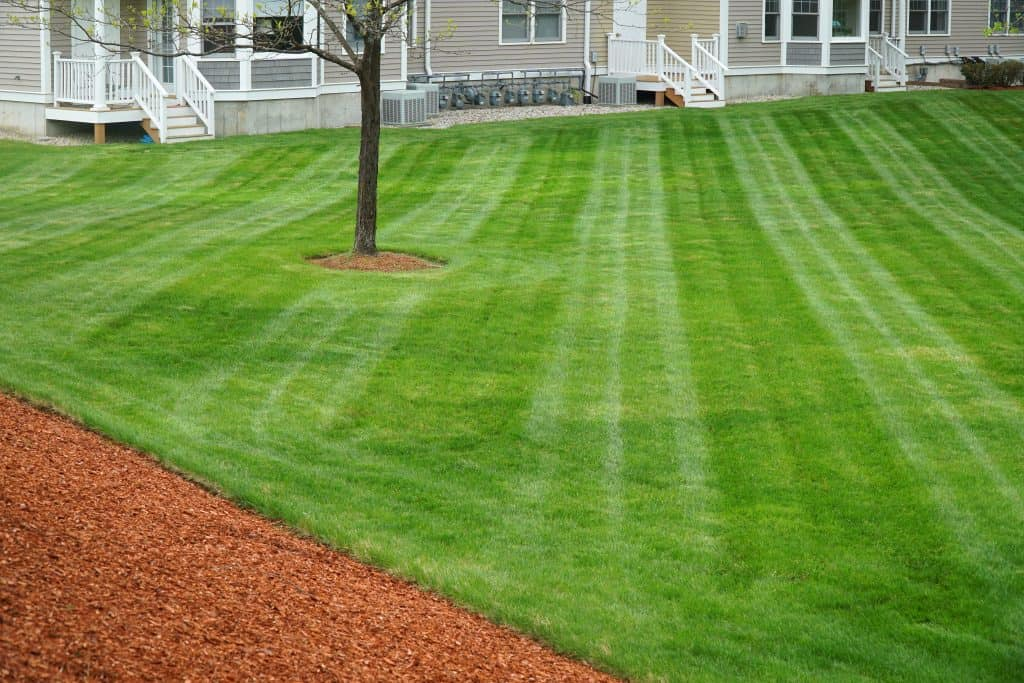 BEST lawrence INDIANA LAWN CARE MOWING