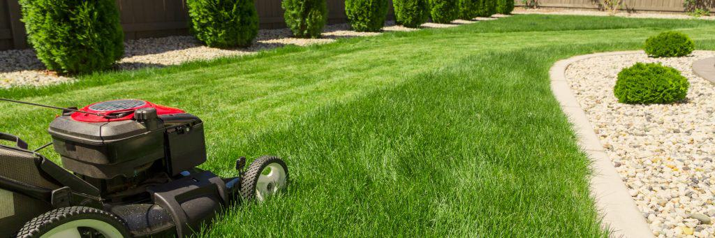 Best McCordsville Indiana Lawn Mowing Service 3